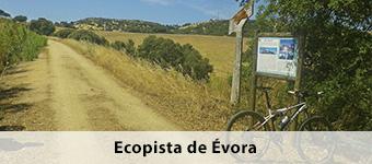 Ecopista de Evora