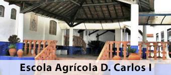 Escola Agricola D