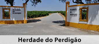 Herdade do Perdigao