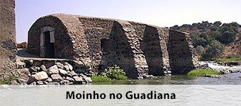 Moinho no Guadiana