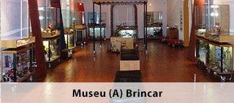 Museu (A) Brincar