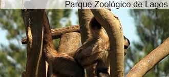 Parque Zoologico de Lagos