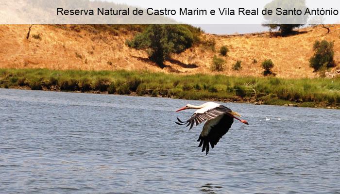 Reserva Natural de Castro Marim e Vila Real de Santo Antonio