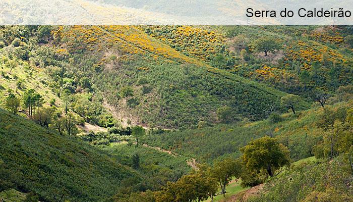 Serra do Caldeirao