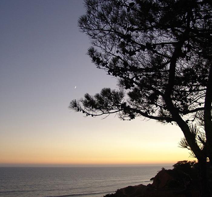 AlgarveLua