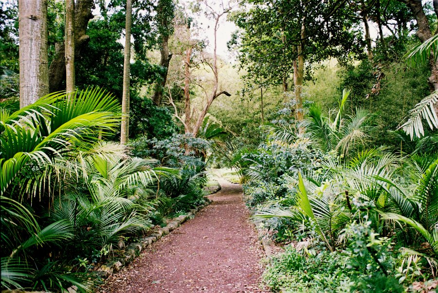 Jardim Jose do Canto