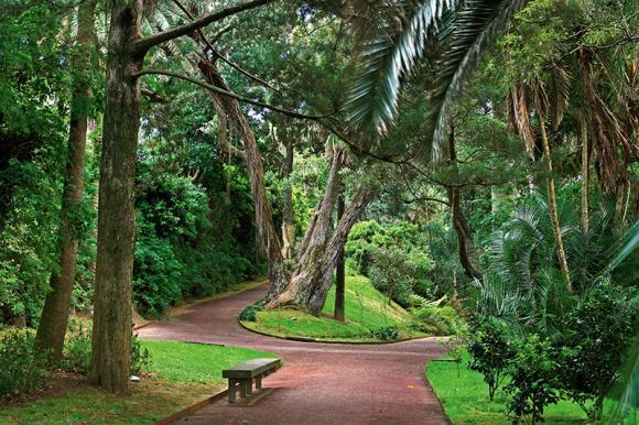Jardins Romanticos