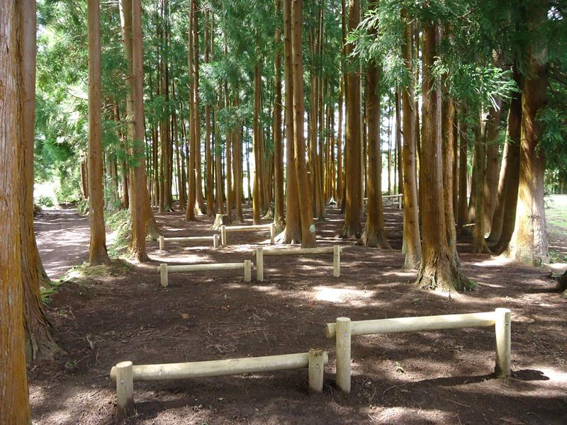 Reserva Florestal de Recreio Boca da Baleia