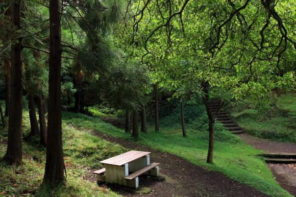 Reserva Florestal de Recreio da Cha de Macela