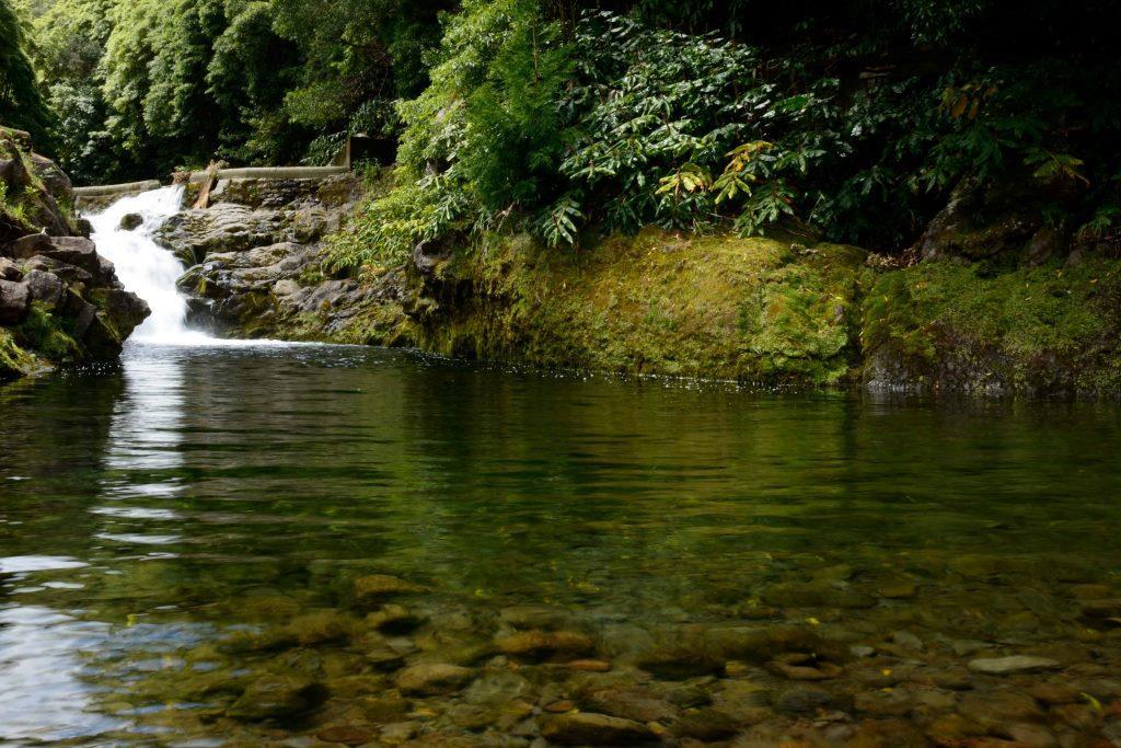 Reserva Florestal de Recreio da Faja do Rodrigo