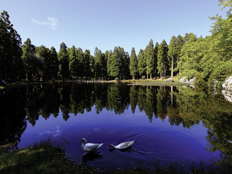 Reserva Florestal de Recreio da Lagoa das Patas