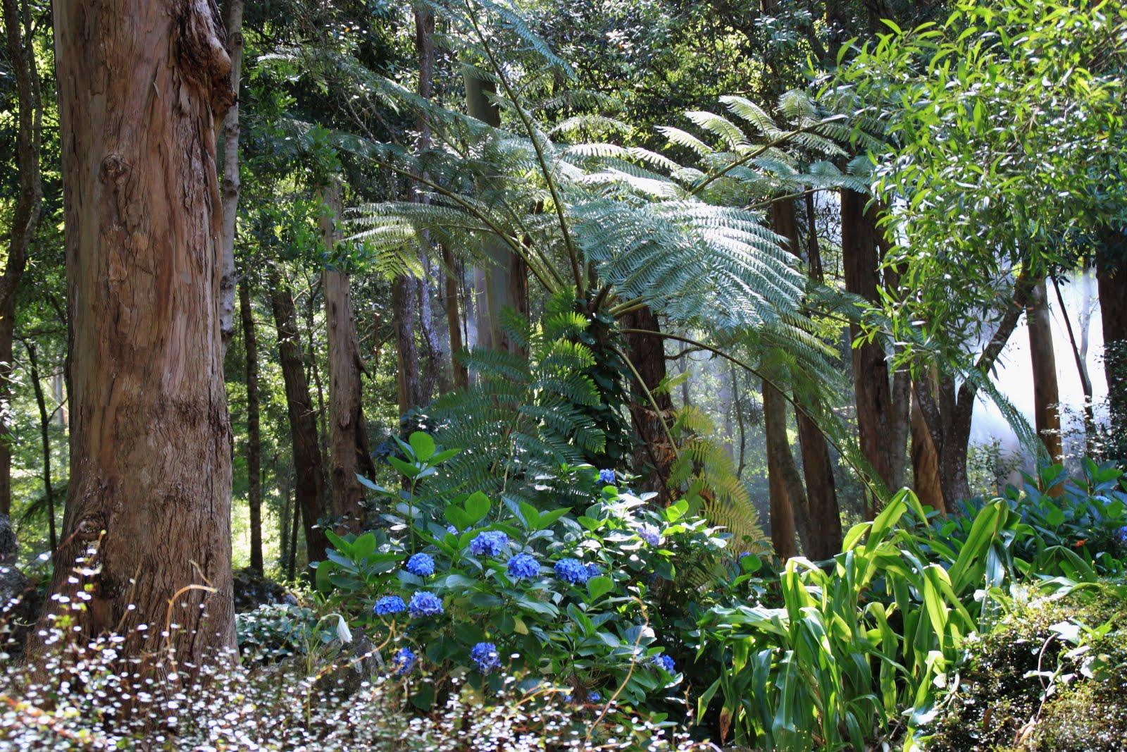 Reserva Florestal de Recreio da Mata da Serreta