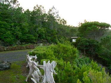 Reserva Florestal de Recreio da Prainha