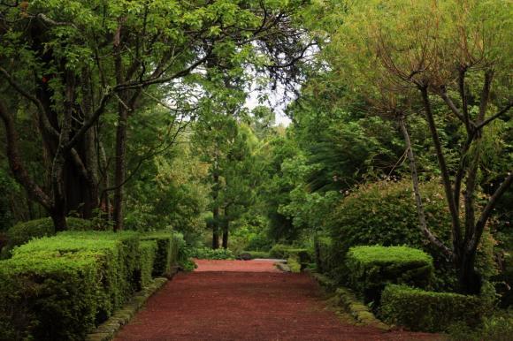 Reserva Florestal de Recreio da Quinta das Rosas