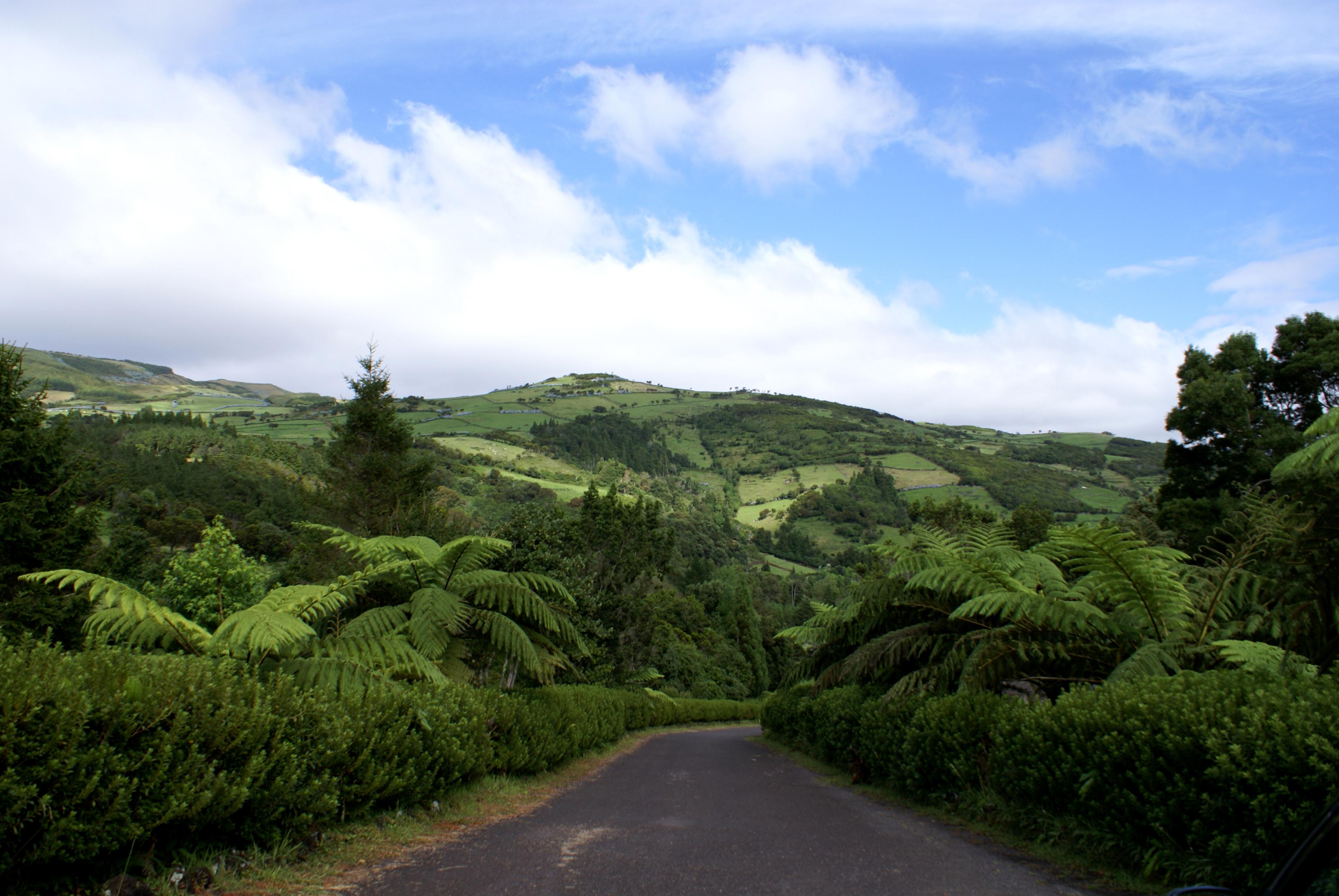Reserva Florestal de Recreio da Silveira
