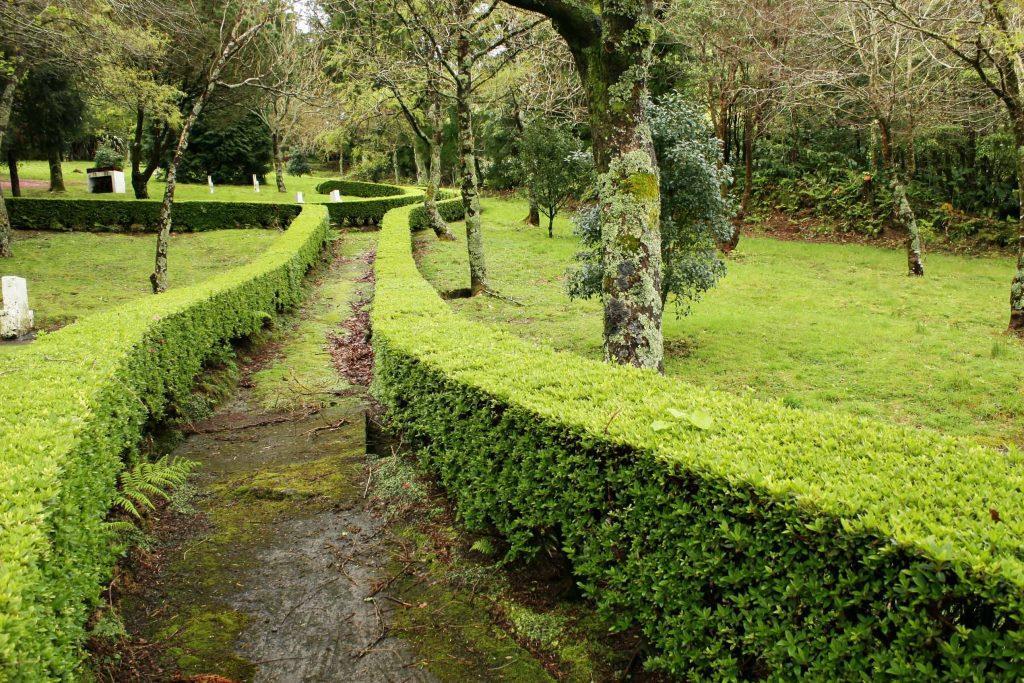 Reserva Florestal de Recreio de Agua Retorta