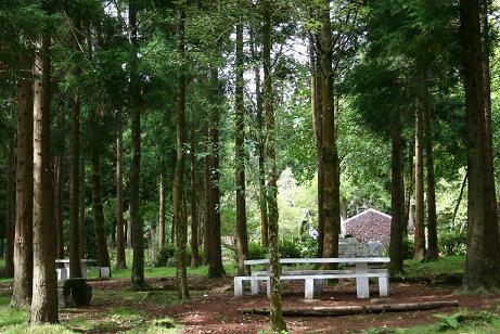 Reserva Florestal de Recreio do Viveiro da Falca