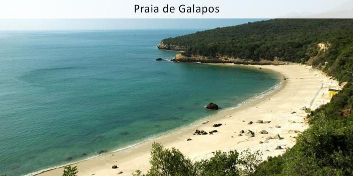 1Praia de Galapos