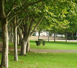 Parque de Vanicelos