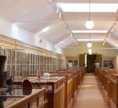 museu geologico