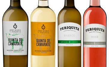 vinhos brancos e rosados