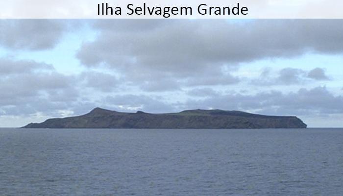 Ilha Selvagem Grande
