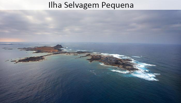 Ilha Selvagem Pequena