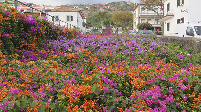 Santa Cruz, Madeira1