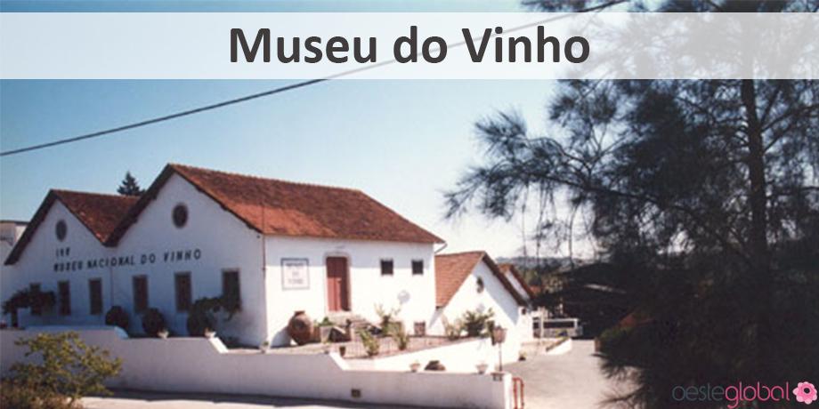 MuseuVinho_OesteGlobal