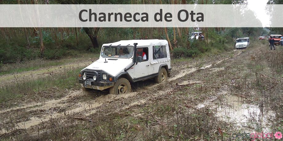 CharnecaOta1_OesteGlobal