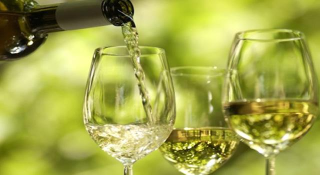 Rotas Vinhos Verde